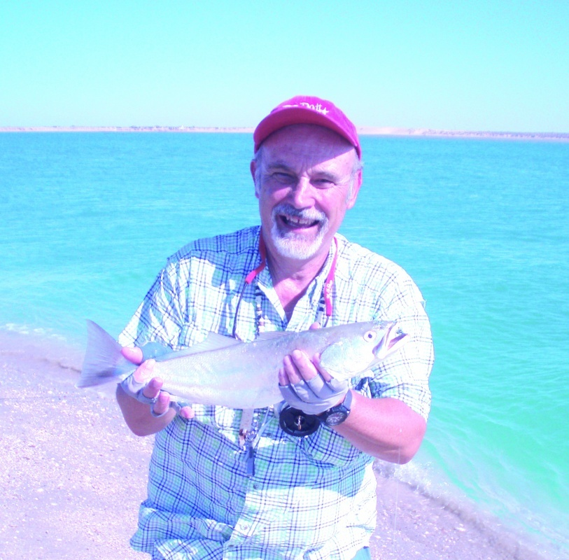 Fly fish puerto pe asco rocky point times newspaper for Puerto penasco fishing