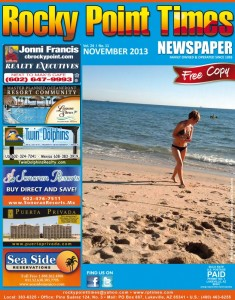 Cover1113