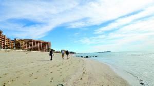 beach-rocky-point