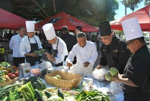 TOP Chef Competition 2015