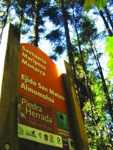 Santuario_de_la_Mariposa_Monarca