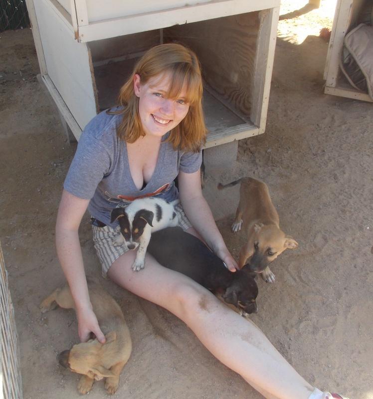 Animal Adoption Center of Rocky Point