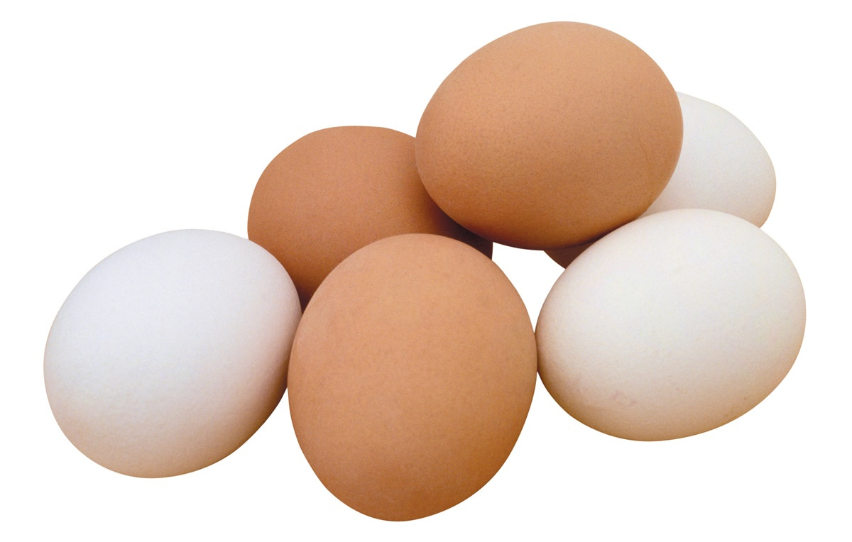 The myths about eggs