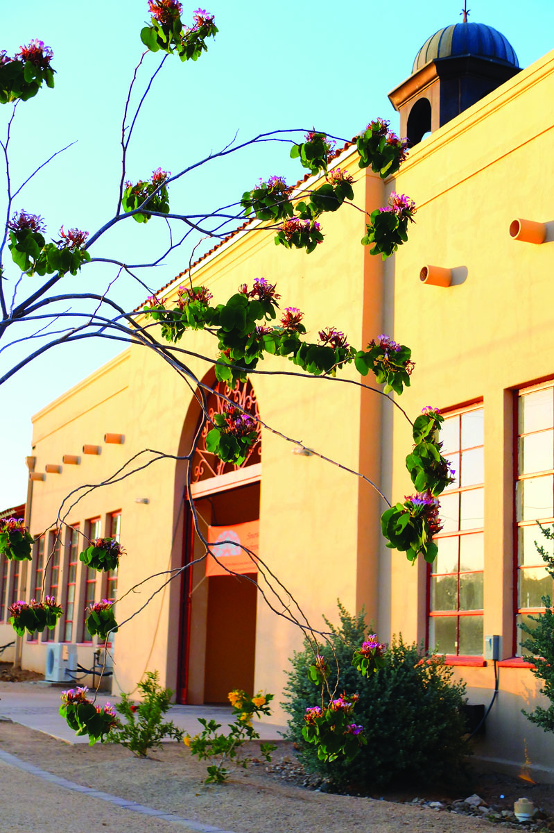 The Sonoran Desert Conference Center Celebrates One Year in Ajo!