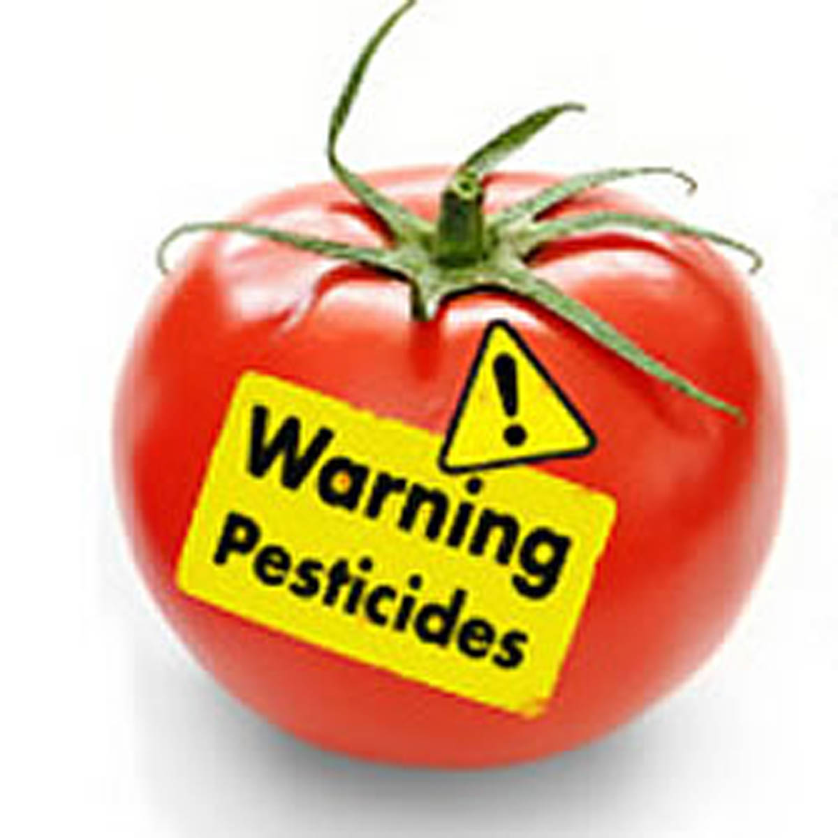 What The Mayans Knew About Pesticides