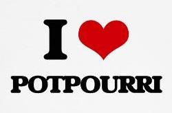 Potpourri – Short Shorts of All Sorts!