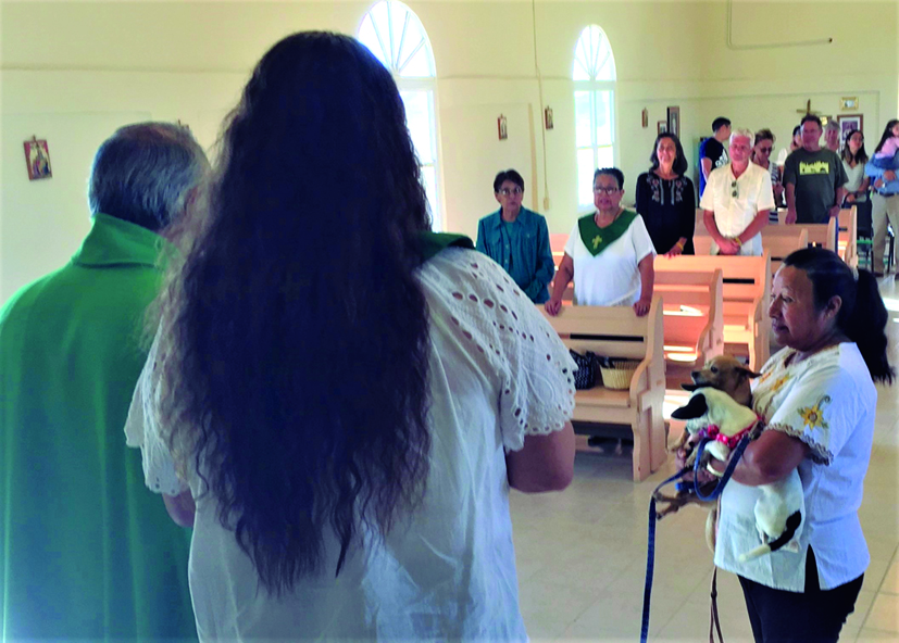 Blessing of the animals and anointing of the sick